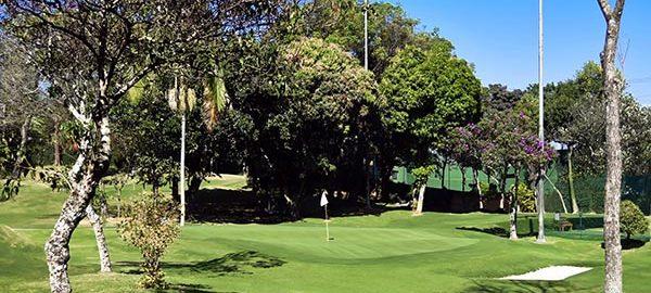 Honda Golf Center passa a abrir às 11 horas nos dias de semana e libera green de treino