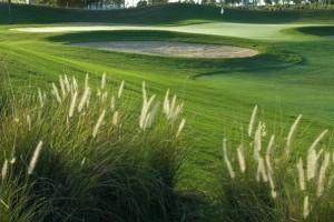 Torneio de Golfe em comemoração aos 107 anos da imigração japonesa