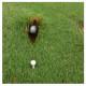 Bola enterrada na área do tee. Tem alívio sem penalidade?