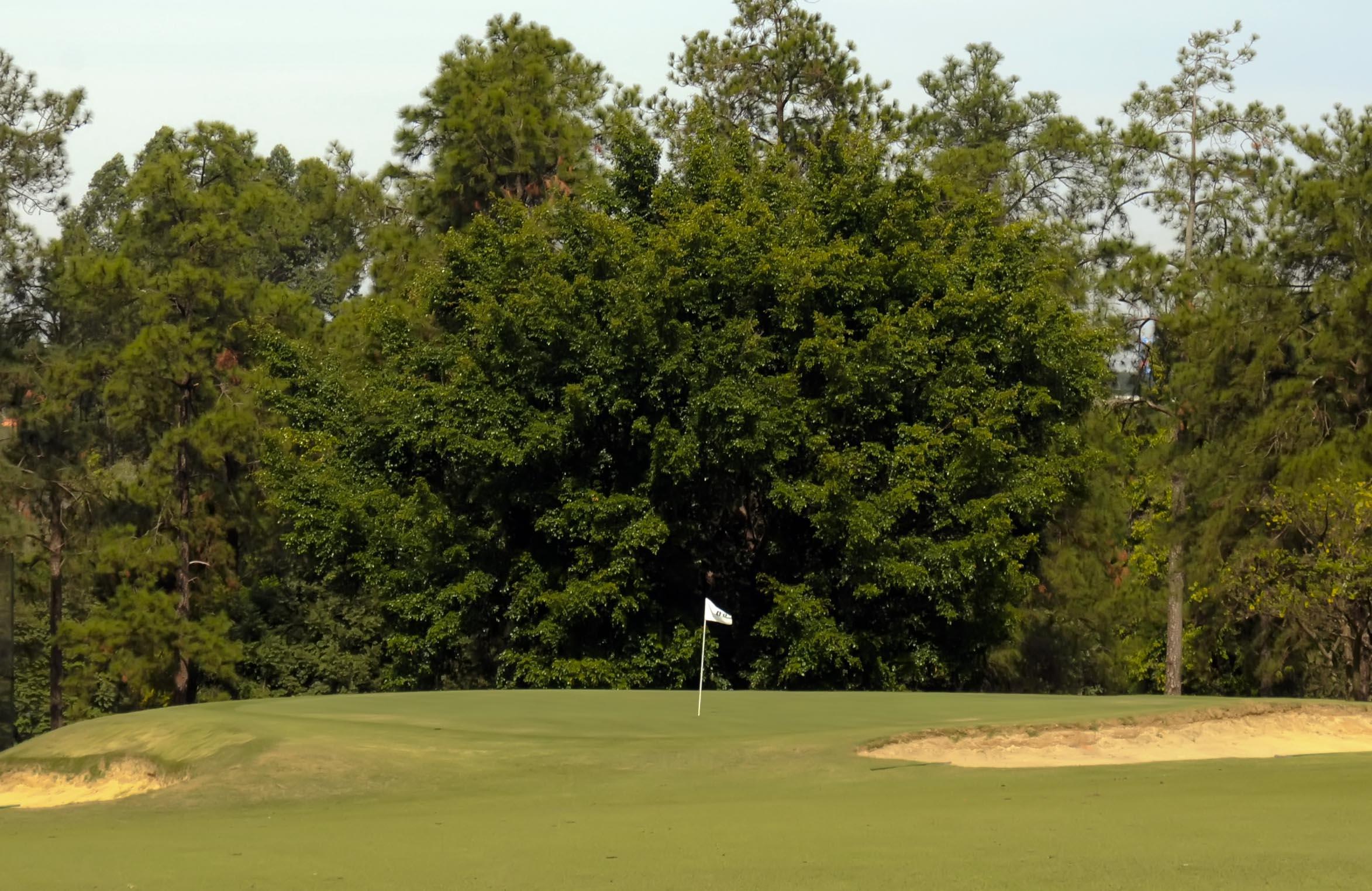 Grupo Primavera realiza 17ª edição do tradicional torneio de golfe