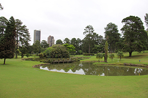 Graciosa Country Club recebe Torneio de Golfe Pró-Renal em agosto