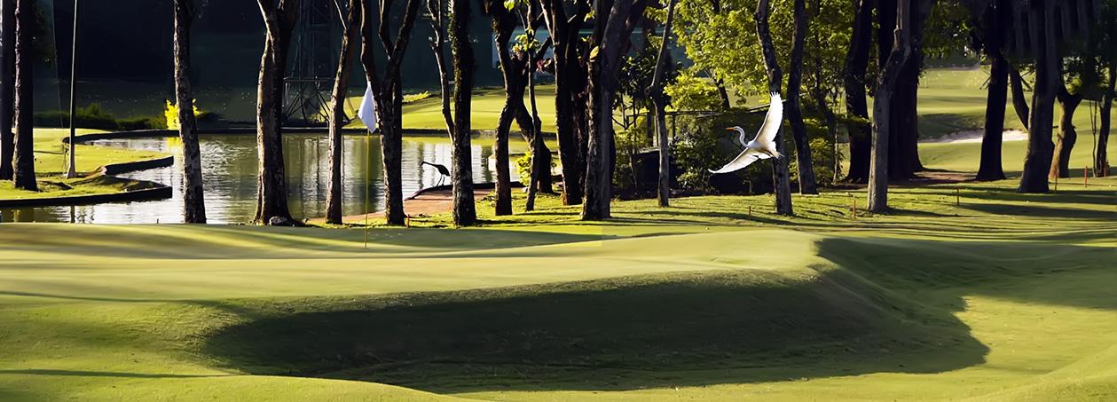Honda Golf Center dá 50% de desconto para mulheres e juvenis de até 18 anos