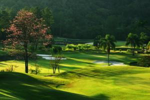 48º Campeonato Nikkey de Golfe do Brasil reunirá 230 jogadores de todo o Brasil no PL Golf Club