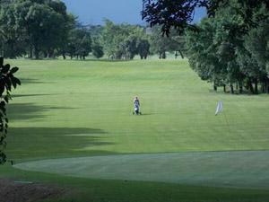 Aberto do Santos São Vicente Golf Club completa 69 anos. Inscreva-se já!